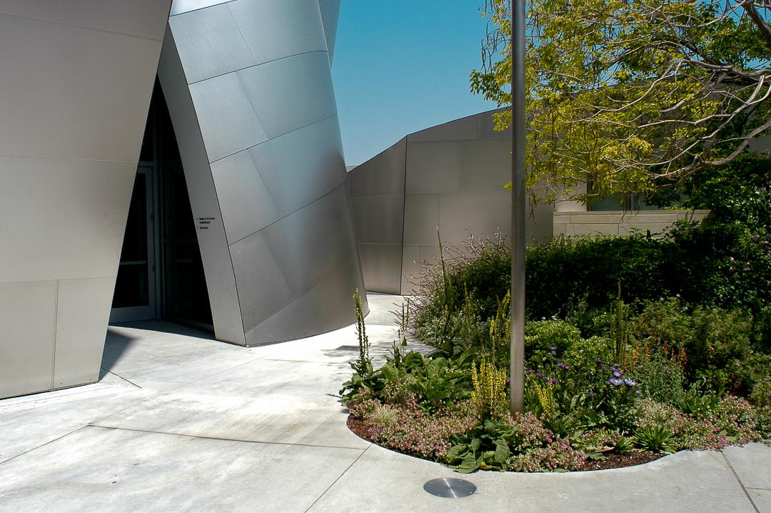 Walt Disney Concert Hall L.A.